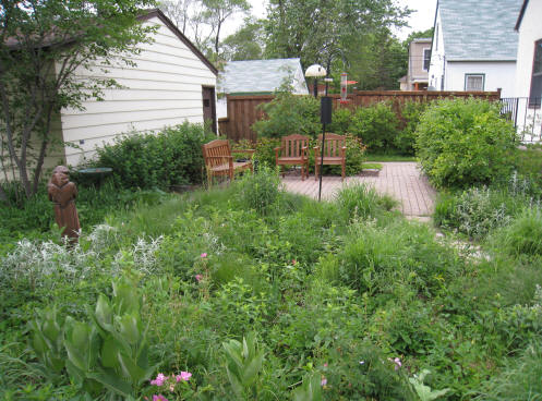 Out Back Nursery Landscaping Services Native Plant Gardens